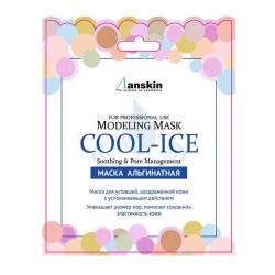 Anskin Cool-Ice Modeling Mask 25g