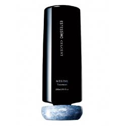 Lebel ESTESSIMO CELCERT MELINE Treatment 250ml - Разглаживающая маска для жестких волос